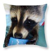 Baby Face Bandit Throw Pillow