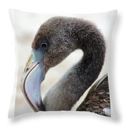 Baby Flamingo Throw Pillow