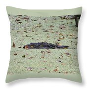 Baby Gator In The Swamp Throw Pillow
