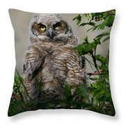 Baby Great Horned Owl Throw Pillow