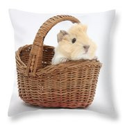 Baby Guinea Pig In A Wicker Basket Throw Pillow
