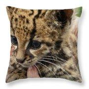 Baby Jaguar Throw Pillow