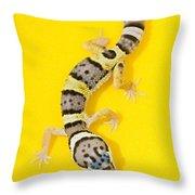 Baby Leopard Gecko Throw Pillow