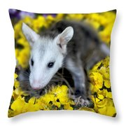 Baby Opossum In Flowers Throw Pillow