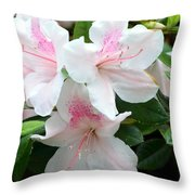 Baby Pink Azaleas Throw Pillow