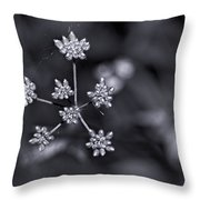 Baby Queen Anne's Lace Monochrome Throw Pillow