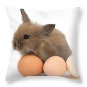 Baby Rabbit With Eggs Throw Pillow