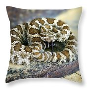 Baby Rattle Throw Pillow