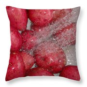Baby Reds With A Splash Throw Pillow