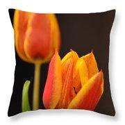 Baby Tulips Close Up Macro Throw Pillow