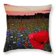 Bachelor Buttons And Poppies Throw Pillow