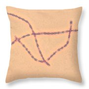 Bacillus Anthracis Throw Pillow