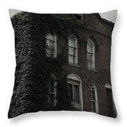 Back Hill Throw Pillow