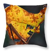 Back-lit Golden Leaf Throw Pillow