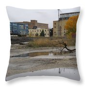 Back Of Warehouse Train 1 Throw Pillow
