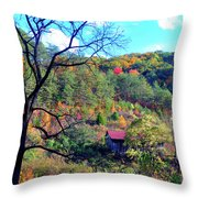 Back Road Barn Throw Pillow