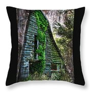 Back To Nature - Crumbling Barn Throw Pillow