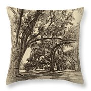 Back To The Future Antique Sepia Throw Pillow