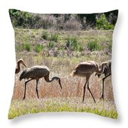Back To The Salt Mines Throw Pillow