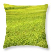Background Of Green Summer Hay Field In Maine Throw Pillow