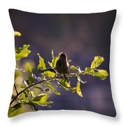 Backlit Song Throw Pillow
