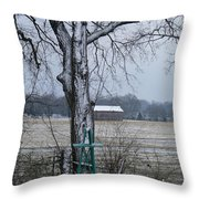 Backyard Panoramic Throw Pillow