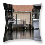 Backyard Waterway Throw Pillow