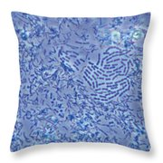 Bacteria Lm Throw Pillow