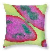 Bacteria Reproducing Throw Pillow