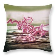 Bacteria, Treponema Pallidum, Sem Throw Pillow