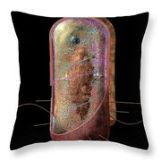 Bacterial Cell Generalised Throw Pillow by Russell Kightley