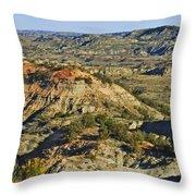 Bad Lands  Throw Pillow
