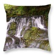 Badger Dingle Throw Pillow