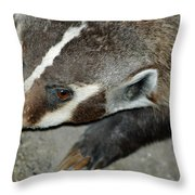 Badger On The Loose Throw Pillow