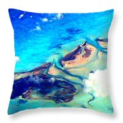 Bahama Out Island Filtered Throw Pillow