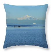 Baker View Throw Pillow