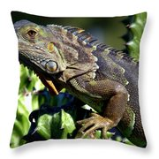 Balance Of Scales Throw Pillow
