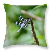 Balancing  Throw Pillow