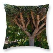 Balboa Park San Diego Throw Pillow