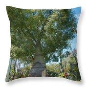 Balboa Tree Throw Pillow