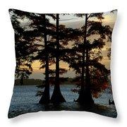 Bald Cypress Trees Growing Throw Pillow