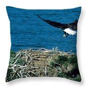 Bald Eagle And Chicks Throw Pillow