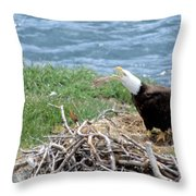 Bald Eagle Calling Throw Pillow