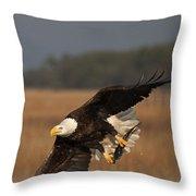 Bald Eagle Catches Fish Throw Pillow