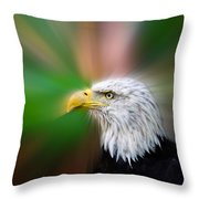 Bald Eagle Color  Throw Pillow