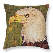 Bald Eagle Embroidered Throw Pillow