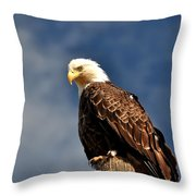 Bald Eagle Homer Alaska Throw Pillow