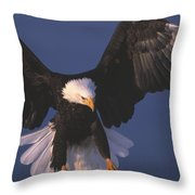 Bald Eagle Hovering In The Air Throw Pillow