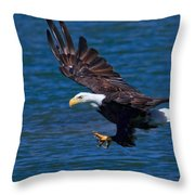 Bald Eagle On The Hunt Throw Pillow
