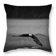Bald Eagle Take Off Series 4 Of 8 Throw Pillow